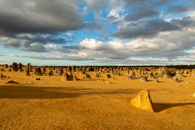 The Pinnacles Desert (Western Australia)