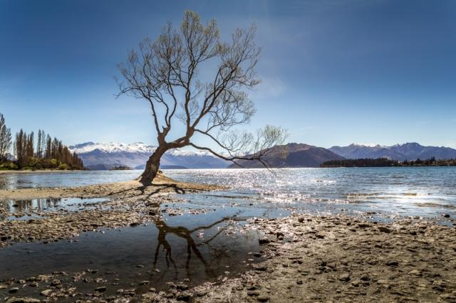 Wanaka Lake (South Island, New Zealand)